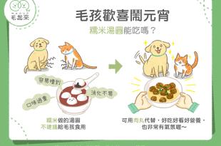 【毛孩食品解析】毛孩歡喜鬧元宵~糯米湯圓能吃嗎?不妨用這個代替!