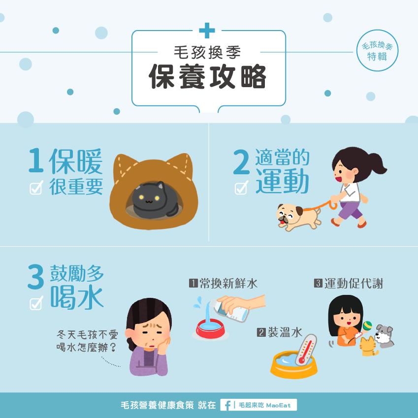 貓咪狗狗毛孩換季健康警訊溫差受寒少喝水氣管泌尿心臟疾病來報到