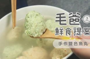 毛起來吃毛爸鮮食提案狗狗寵物鮮食元宵手作雙色魚丸湯