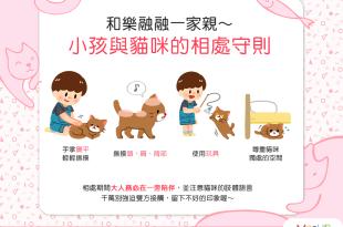 和樂融融一家親~小孩與貓咪的4個相處守則!