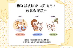 貓貓減敏訓練3招搞定!放鬆洗澡趣~
