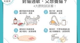 【汪喵康健】對貓過敏又想養貓怎麼辦?4招減少過敏原!