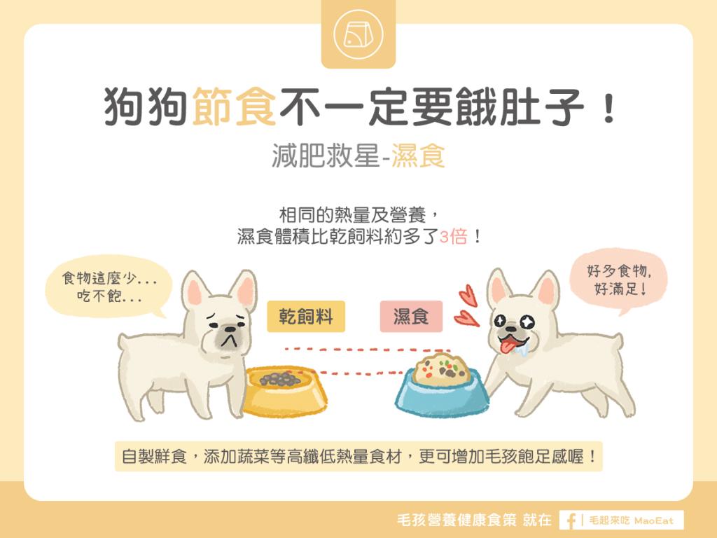 狗狗節食不一定要餓肚子減肥救星-濕食