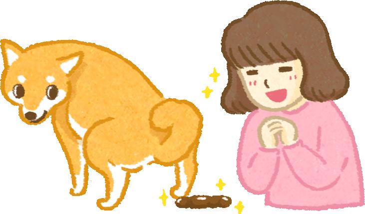 貓狗準備鮮食前一定要有的認知3大重點您準備好了嗎