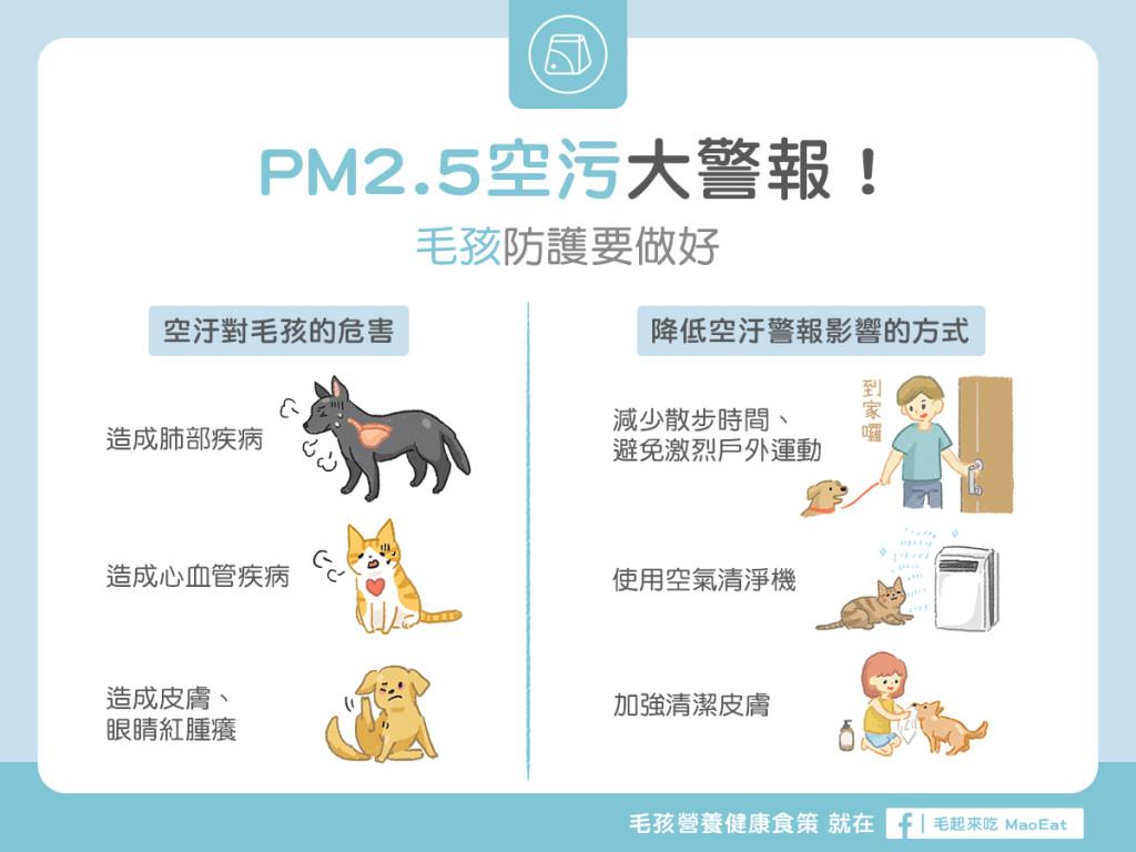 貓狗空氣汙染PM2.5空汙寵物氣管肺部空氣清淨機降低空汙傷害空汙防護