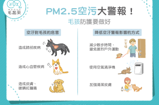 【汪喵康健】PM2.5空汙大警報!如何降低空汙對毛孩的氣管傷害?