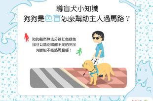 咦?狗狗是色盲,那怎麼幫助主人過馬路呢?