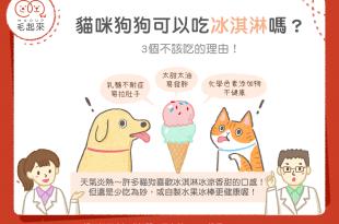 【毛孩食材圖鑑】天氣熱~貓狗可以吃冰淇淋嗎?3個不該吃的理由!