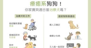 治療犬是什麼?如何成為治療犬?