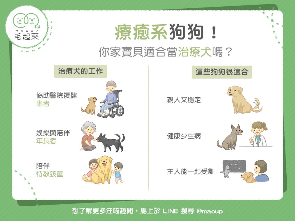 【汪汪小百科】治療犬是什麼?我家狗狗可以成為治療犬嗎?