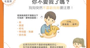 【汪汪康健】你不愛我了嗎?狗狗突然不喜歡抱抱要注意!