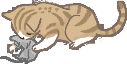 貓狗飲食習慣大不同從野生同類看出端倪