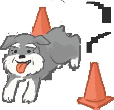 誰說老狗變不出新把戲腦力激盪讓狗狗維持腦力防失智癡呆
