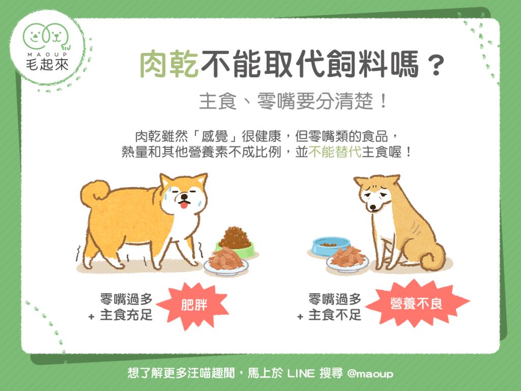 【汪喵餵養知識】肉乾不能取代飼料嗎?主食、零嘴要分清楚!