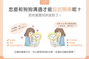 怎麼和狗狗說話才能拉近關係呢把他當嬰兒哄就對了
