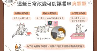 【喵喵康健】貓咪突然病懨懨?原來是日常改變惹的禍!