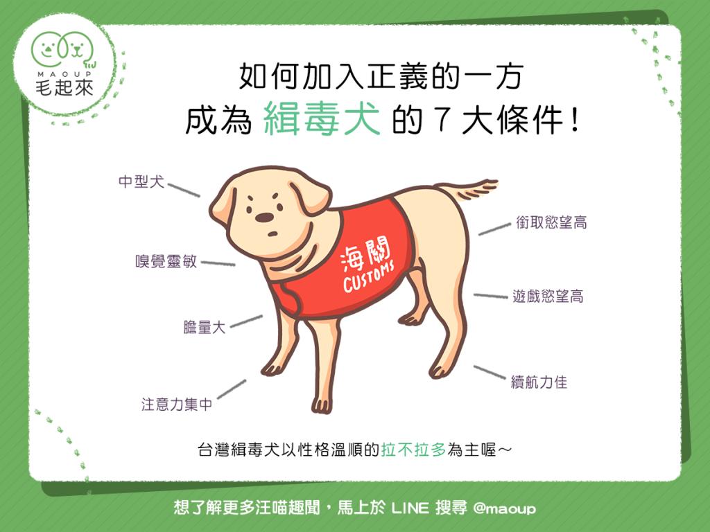【汪汪冷知識】如何加入正義的一方成為「緝毒犬」的7大條件!