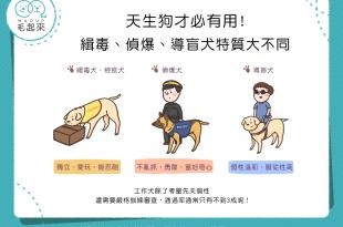 【汪汪冷知識】天生狗才必有用!緝毒、偵爆、導盲犬特質大不同