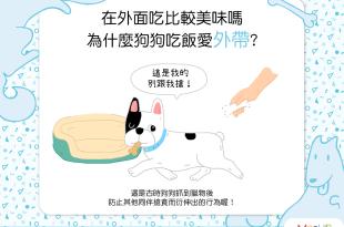 「外帶」更美味?為什麼狗狗不愛在碗裡吃飯?