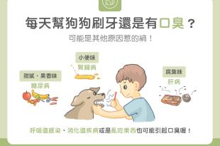 每天幫狗狗刷牙嘴巴乾淨還是有口臭?可能是其他疾病原因造成!