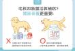 關節疼痛卡卡不是缺鈣!貓狗的靈活靠葡萄糖胺軟骨素膠原蛋白!