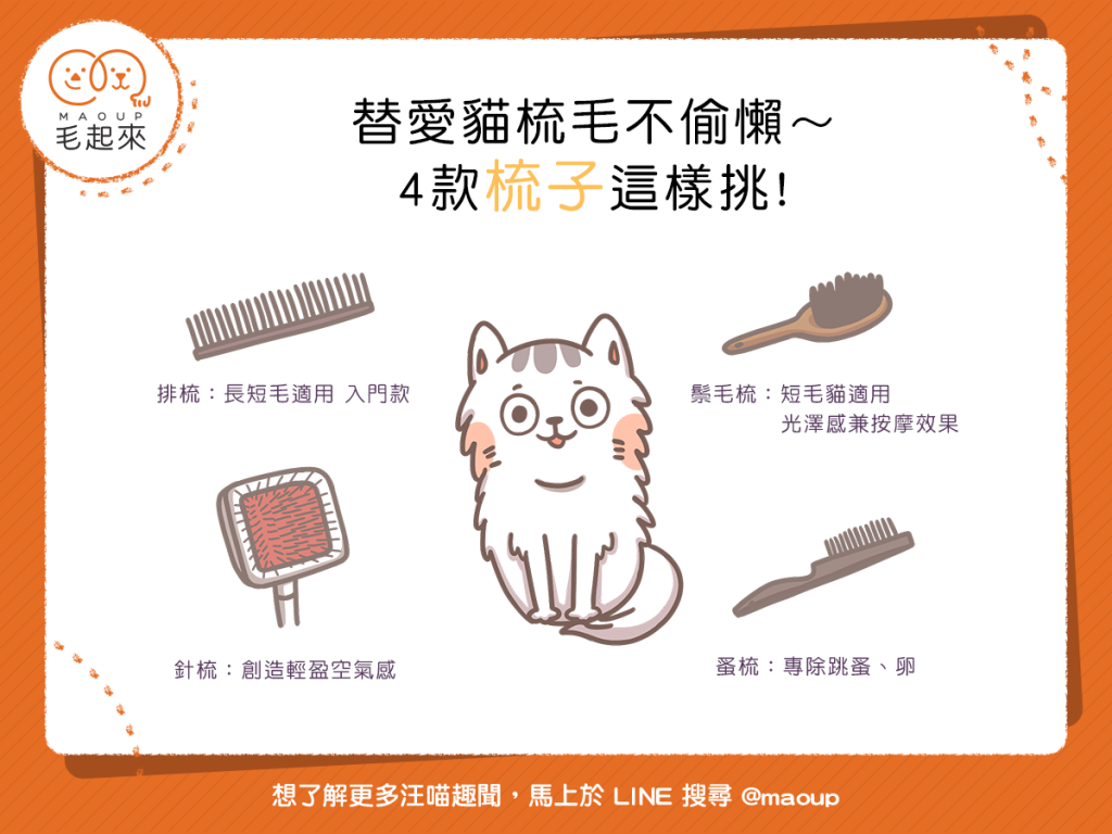 幫貓梳毛的四種梳子
