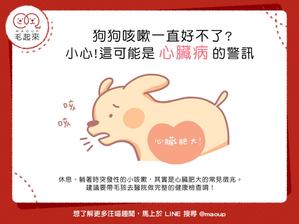 【汪汪康健】狗狗咳嗽一直好不了?小心!這可能是心臟病的警訊