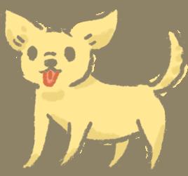 關節退化疾病問題好發犬種提早保養預防關節炎