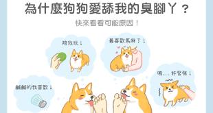 為什麼狗狗愛舔我的臭腳丫?原來是有原因的!