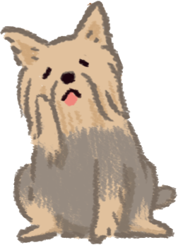 小型犬要注意口腔