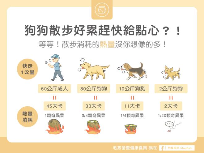 狗狗散步消耗的熱量沒有想像多千萬不要餵過頭
