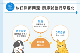 貓狗關節退化3種原因
