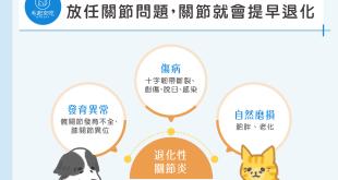 每5隻狗狗就有1隻有關節問題,你家狗狗是高危險群嗎?