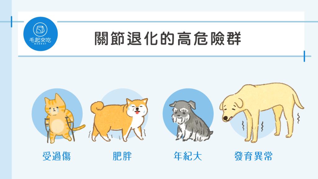 貓狗關節退化的高危險群