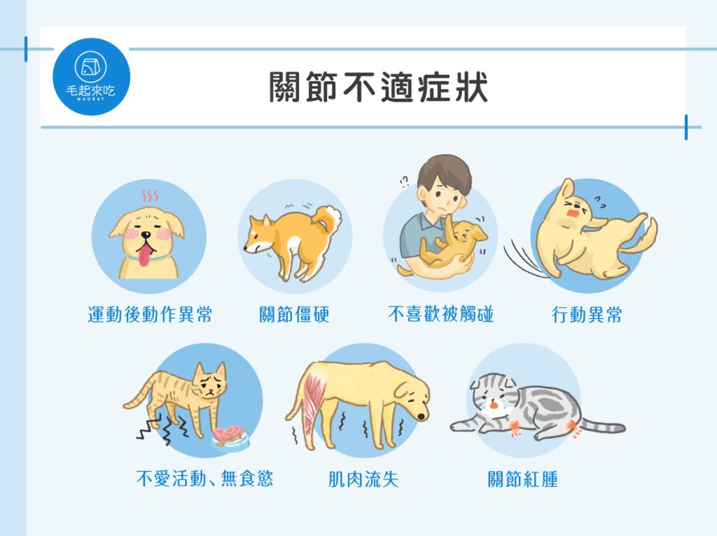 貓狗關節不適的症狀