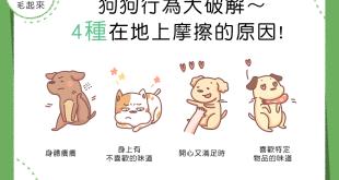 【汪汪行為學】狗狗行為大破解~4種在地上摩擦的原因!