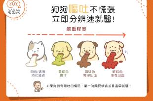 從狗嘔吐顏色判斷症狀