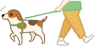 狗狗散步爆衝,牽繩控制,狗狗亂跑