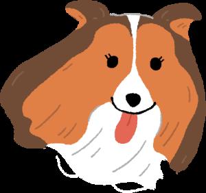 狗狗耳朵百百種