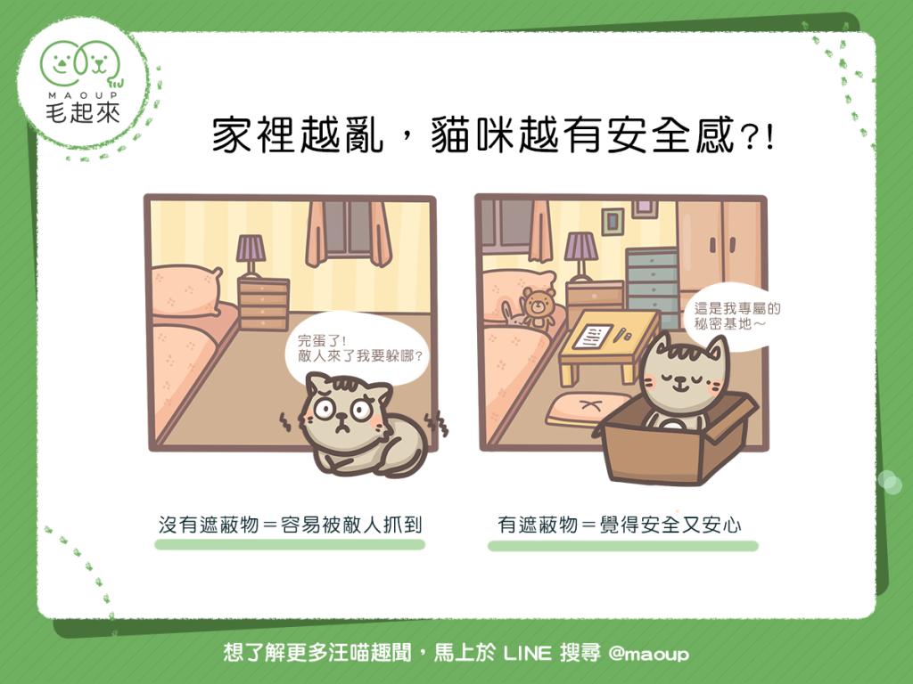 家裡越亂貓咪越有安全感