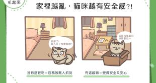 家裡越亂 貓咪越有安全感