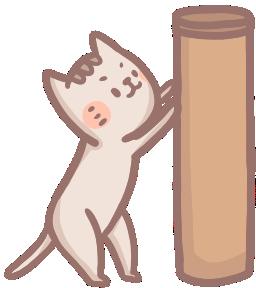 【喵喵行為學】貓咪為什麼這麼愛磨爪?3大原因一次解密!