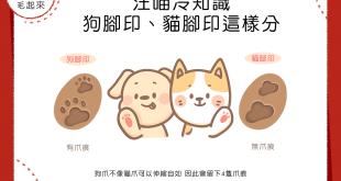 【汪喵冷知識】 狗腳印、貓腳印這樣分!