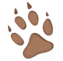狗貓腳印這樣分 dog