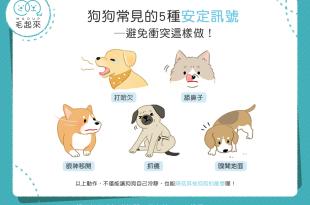 狗狗常見的5種安定訊號!避免衝突這樣做!