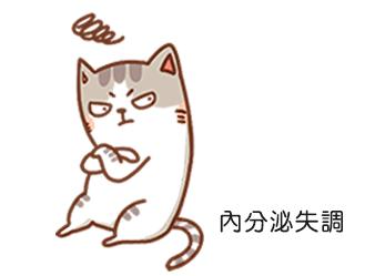 內分泌失調導致貓咪掉毛