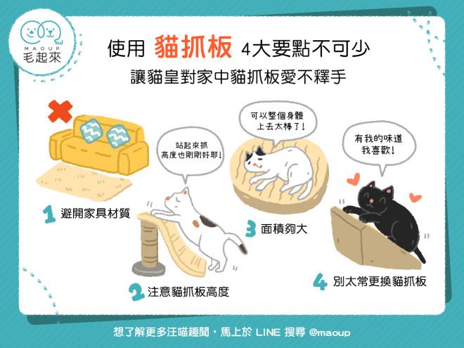 181218_03_使用貓抓板 4大要點不可少