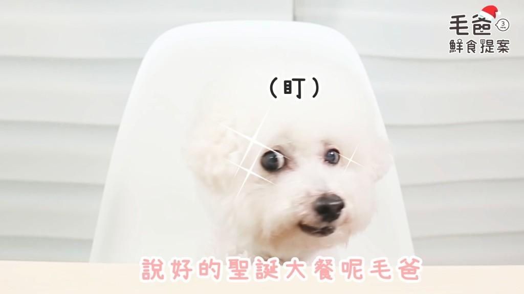 毛爸鮮食提案_黃金香烤雞柳條.mp4_20181222_184002.270