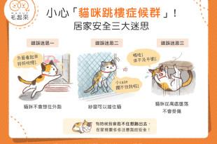 【汪喵家居】小心「貓咪跳樓症候群」!居家安全三大迷思