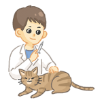 帶貓咪定期接種疫苗